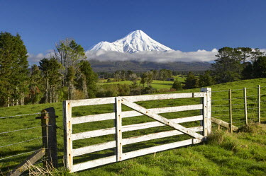 AU02_DWA5053 Gate and Farmland near Stratford and Mt Taranaki / Mt Egmont, Taranaki, North Island, New Zealand