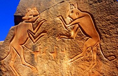 LIB1232 Libya, Fezzan, Messak Settafet. A petroglyph of felines, known as the 'dancing cats' -stands by a ledge high above Wadi Mathendusch.