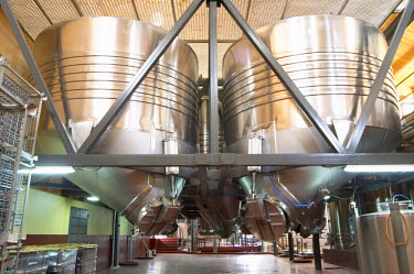Fermentation tanks, unusual conic shaped bottom to make it easier to remove the legs. Bodega Familia Schroeder Winery, also called Saurus, Neuquen, Patagonia, Argentina