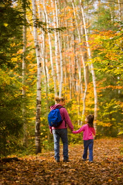 US30_JMO1143 A mom and her young daughter (age 6) hike on the Lincoln Woods Trail in New Hampshire's White Mountain National Forest, USA