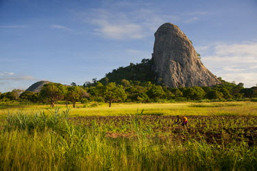 MOZ1468 Mozambique, near Nampula. The stunning landscape of Northern Mozambique early in the morning.