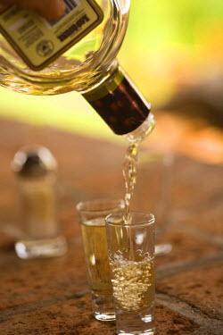 SA13_SWS0469 Los Osuna, Tequila Farm & Distillery (since 1876) La Noria near Mazatlan, Sinaloa State, Mexico