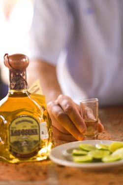 SA13_SWS0526 men drinking, Los Osuna, Tequila Farm & Distillery (since 1876) La Noria near Mazatlan, Sinaloa State, Mexico (MR)