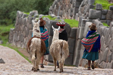 PER33466 Peru, Native Indian women lead their llamas past the ruins of Saqsaywaman, built by the Incas on pre-Inca foundations.