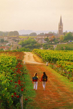 NP00343553 Girls passing through St Emilion vineyards on way to school in France