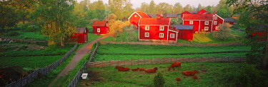 NP01114237 Traditional red farm houses and barns at village of Stensjoby in Smaland, Sweden