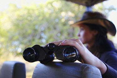 SAF6049AW Woman holding binoculars on safari truck, Kruger National Park, Mpumalanga, South Africa (MR)