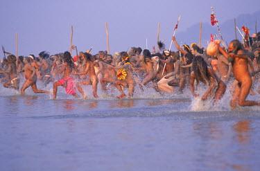 AR6639600016 Sadhus enthusiastically entering the Ganges, Kumbh mela, Allhabad, India