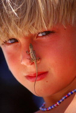 AR2161616825 Close-up of boy with a lizard on his nose, USA