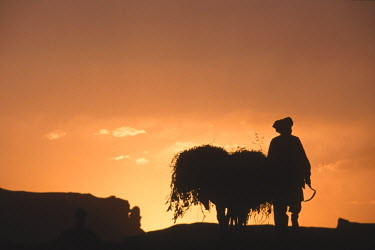 AR9071800026 A farmer with his donkey loaded with forage walks toward the setting sun above the town of Bamiyan, Afghanistan