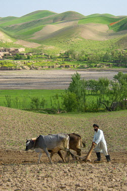 AR9677600023 A farmer ploughs a field with oxen, near a village with traditional domed homes  below green hills, in Kushk-i Kuhna district, Herat Province, Afghanistan