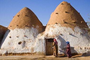 AR9844900011 Beehive like houses in the village of Sarouj, east of Hama, Syria.