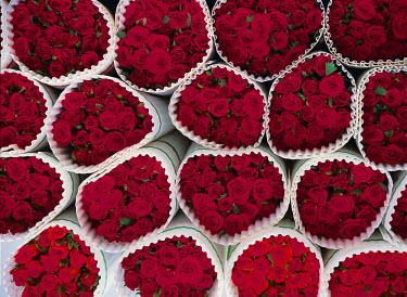 NP00433521 High angle view of bouquets of red roses, Sweden.