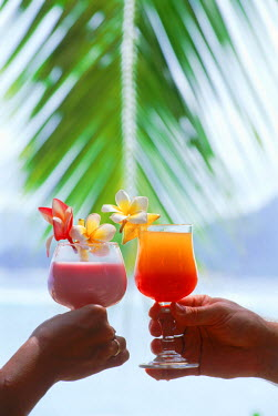 NP01578288 Couple on island holiday toasting with tropical drinks, Maldive Islands.