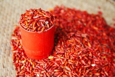 MOZ1562AW Chillies at market, Inhambane, Mozambique