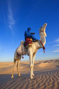 TU03371 Tunisia, Sahara Desert, Douz, Great Dune, rider and camel, NR