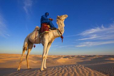 TU03372 Tunisia, Sahara Desert, Douz, Great Dune, rider and camel, NR