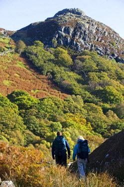 WAL7191 North Wales, Snowdonia.  Man and woman trekking towards Crimpiau peak. (MR)