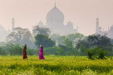 IN02154 Women carrying water pots, Taj Mahal, Agra, India