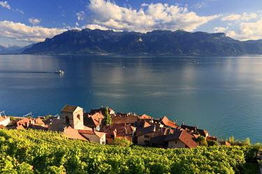 CH03492 Switzerland, Vaud, Lavaux Vineyards, St. Saphorin Village and Lac Leman / Lake Geneva
