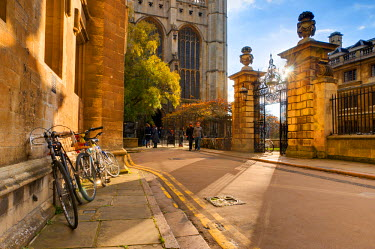 UK07019 UK, England, Cambridgeshire, Cambridge, Trinity Lane, King's College Chapel