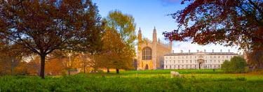 UK07020 UK, England, Cambridgeshire, Cambridge, The Backs, King's College Chapel