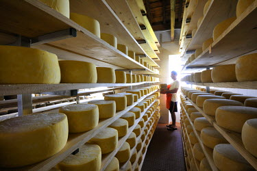 POR0671AW Manufacturing house of the famous Sao Jorge traditional cheese, Santo Amaro, Azores islands, Portugal