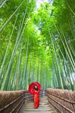 TPX21081 Japan, Kyoto, Arashiyama, Adashino Nembutsu-ji Temple, Bamboo Forest
