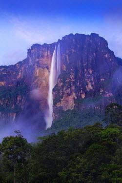 VN01228 Venezuela, Canaima National Park, Angel Falls