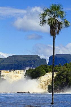 VN01273 Venezuela, Guayana, Canaima National Park, Canaima Lagoon, Hacha falls