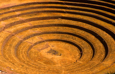 PER33583 Peru, Andes, Cordillerra Urubamba, Urubamba, Moray. Striking Inca terraces - believed to have been a kind of crop nursey - fill an amphitheatre-like bowl in the hills near Maras.