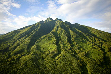 RW1138AW The summit of Mount Sabyinyo at 3,645m marks the intersection of the borders of the Democratic Republic of Congo, Rwanda, and Uganda. Sabyinyo is derived from the Kinyarwanda word Iryinyo, meaning too...