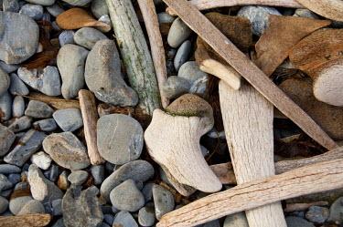 AN02_CMI0162 South Georgia Island, Godthul. Old whalers base located on the north coast. Whale bones litter rocky coastline.