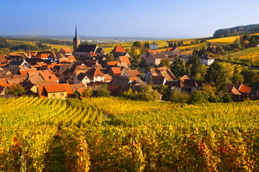 FR01874 France, Bas-Rhin, Alsace Region, Alasatian Wine Route, Blienschwiller, town overview from vineyards, autumn