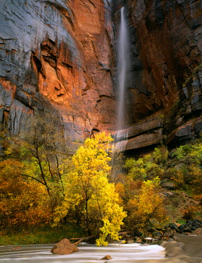 US45_SSM0346 Zion National Park, Utah. USA. Waterfall above Virgin River, Temple of Sinawava, Zion Canyon.
