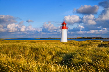 GER0599AW Lighthouse List west, Ellenbogen, Sylt Island, North Frisian Islands, Schleswig Holstein, Germany