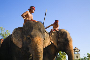 THA0238 Thailand, Surin, Surin.  Suai mahouts and their elephants during the Surin Elephant Roundup festival.  Held in November the festival celebrates Thailand's elephant traditions with elephant games, para...