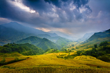 AR4191400014 Rice paddies and mountains in mist and clouds, Sapa, Vietnam, Asia