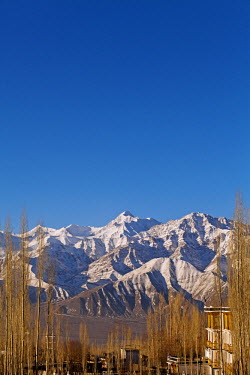 IND6621 India, Ladakh, Leh. Stok Kangri Peak from Leh.  Stok Kangri is the highest mountain in the Stok Range in the Himalayas, in the Ladakh region of North West India.