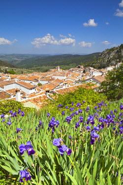 ES05556 Grazalema, Cadiz Province, Andalusia, Spain