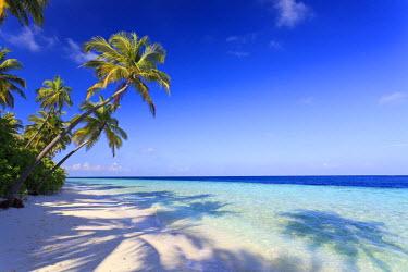 MD01206 Maldives, Faafu Atoll, Filitheyo Island