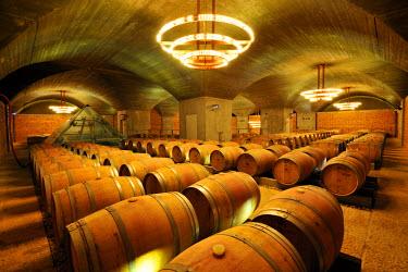 POR6475AW Vale d'Algares wine cellars. Ribatejo, Portugal
