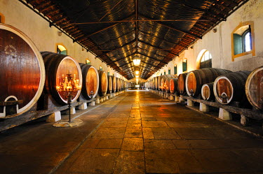 POR6521AW Colares Regional Cellar, of the famous Colares wine. Sintra, Portugal