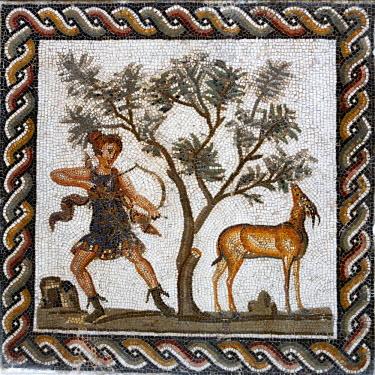 TU03454 Roman mosaic, Bardo museum, Tunis, Tunisia