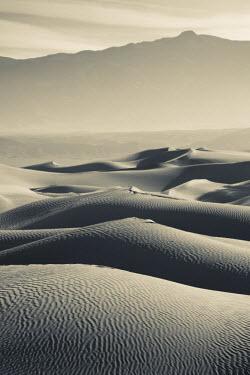 US10673 USA, California, Death Valley National Park, Mesquite Flat Sand Dunes