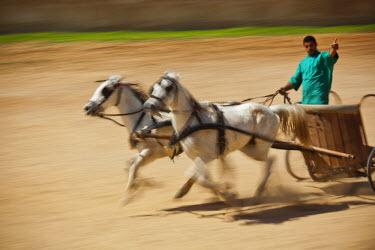 JD07101 Jordan, Jerash, Roman Army and Chariot Experience, Roman-era military show, chariot racing