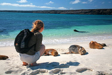 GAL0163 Ecuador, Galapagos. A young woman watches the sunbathing sea lions. MR