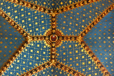 POL1104 Poland, Cracow. The ornately decorated vaulted ceiling in the Church of St Mary, Market Square.