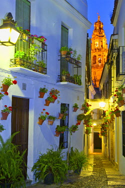 Spain, Andalucia, Cordoba, Traditional flower square at dusk