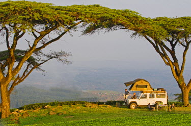 MW1441 Malawi, Thyolo.  Camping overland style with a roof tent fitted to a safari landrover beneath majestic Acacia abyssinica trees at a tea plantation.  (MR)